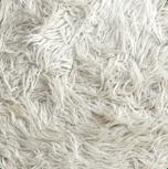 Rugs | The Floor Store